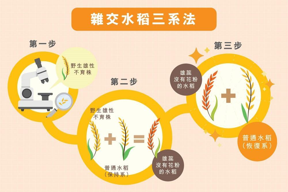 tf4yuanlongping-3