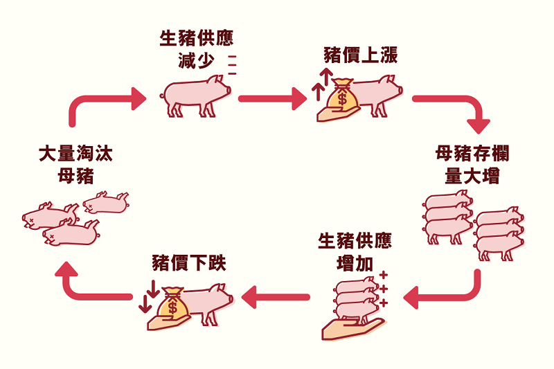 main_site_illustration_zhurou_v2_shengzhugongying-