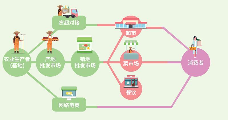 main_site_illustration_cailanzigongcheng_v1_jianti_nongyeshengchanwang